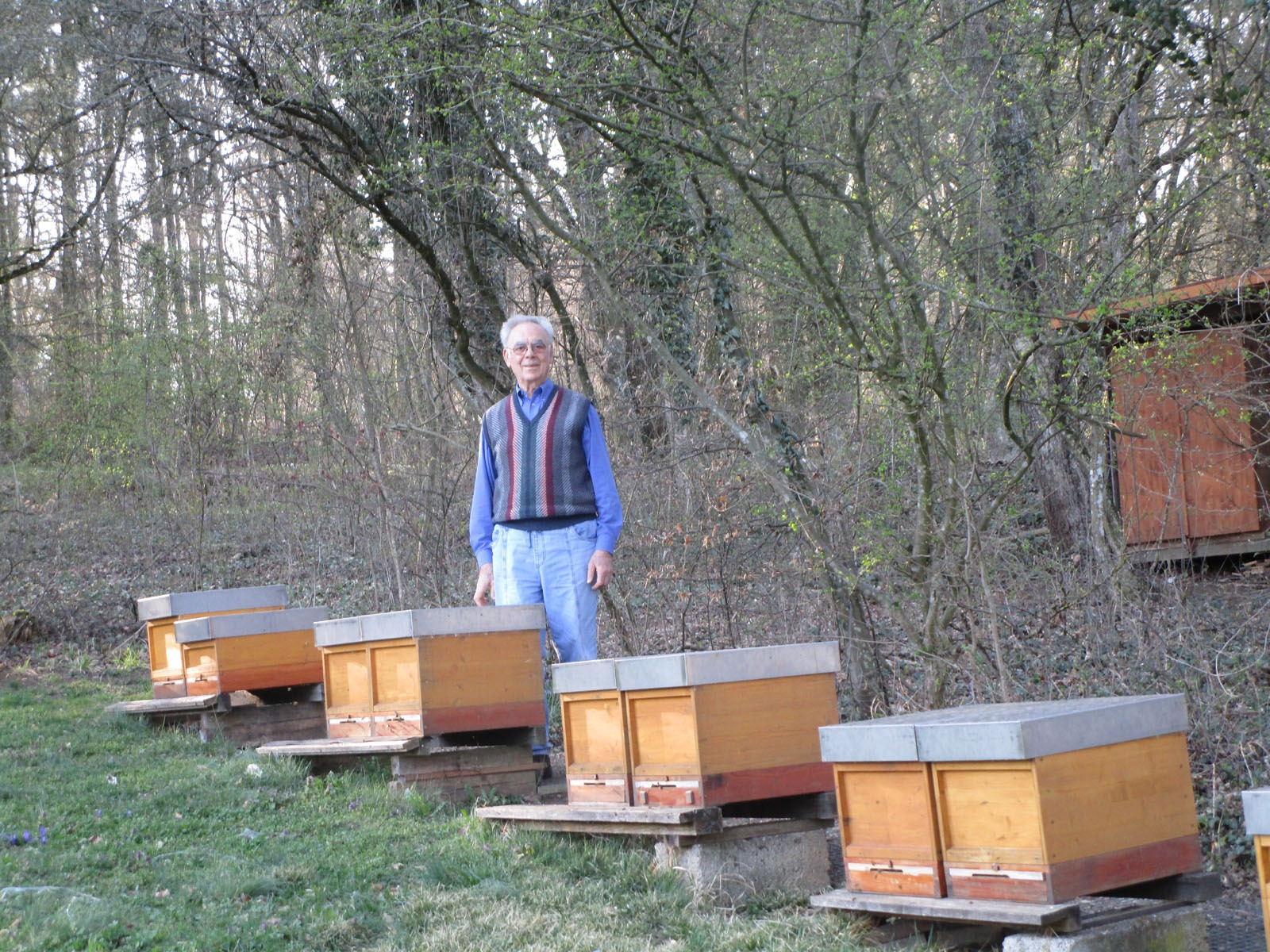 2018_05_08 Wiernsheim, An Paul Göbels Bienenstand